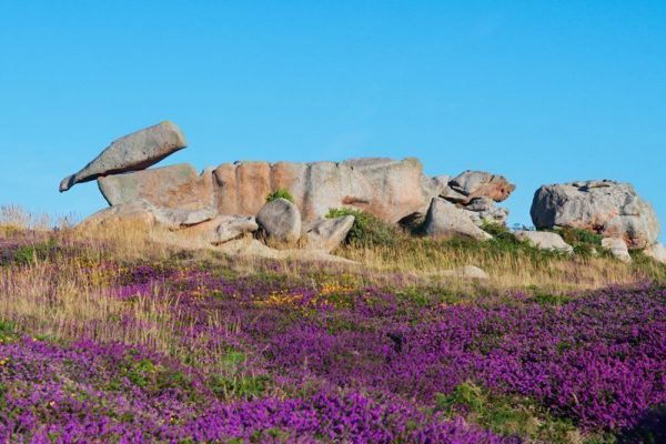 Felsformation an der Rosa Granitküste Originalbild