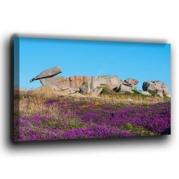 Felsformation an der Rosa Granitküste Leinwand