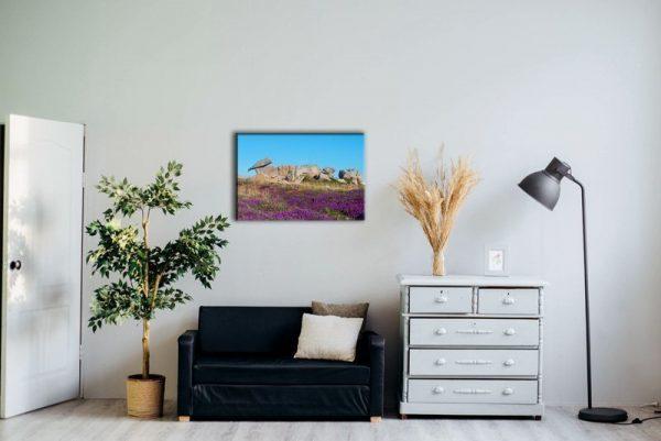 Felsformation an der Rosa Granitküste Raumansicht