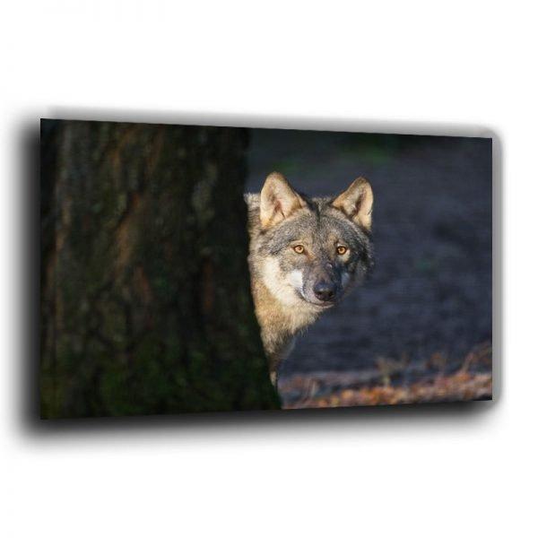 Fotoleinwand Kopfportrait Wolf